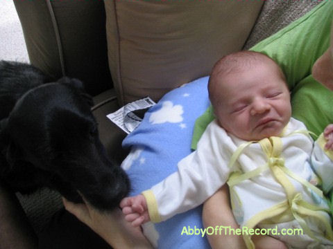 Baby Miles, meeting our dog
