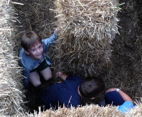 3 boys in hay maze